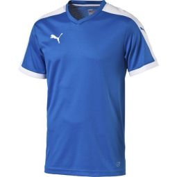 Puma Pitch Short Sleeved Håndball Genser Herre